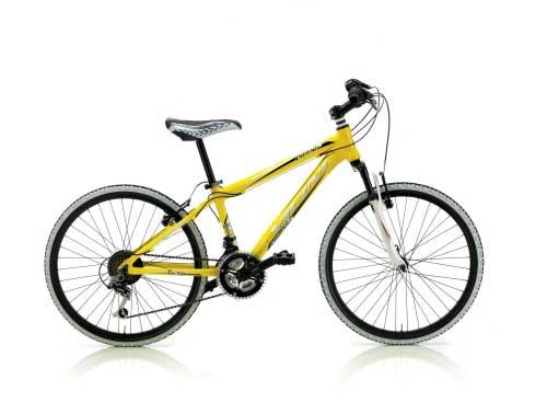 Bicicleta Mountain Bike Vicini Pirate 20