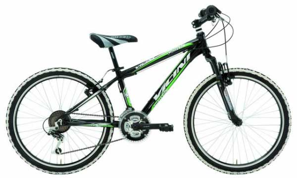 Bicicleta Mountain Bike Vicini Pirate 24